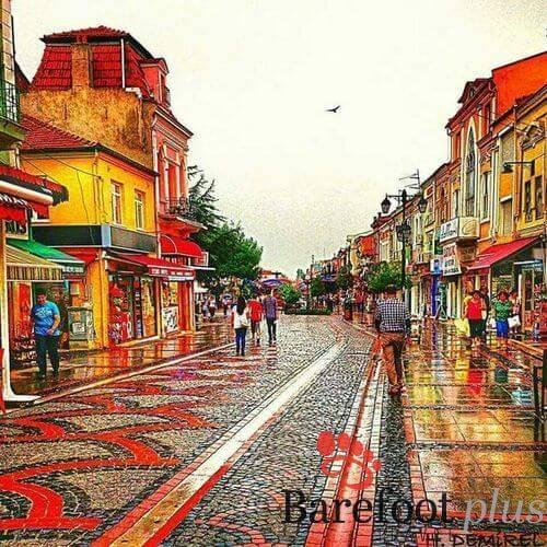Edirne-Turkey5